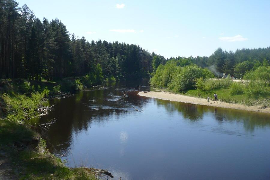 Река Линда у станции Рекшино в Борском районе
